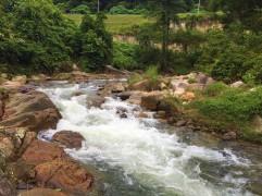 Pisang river flow